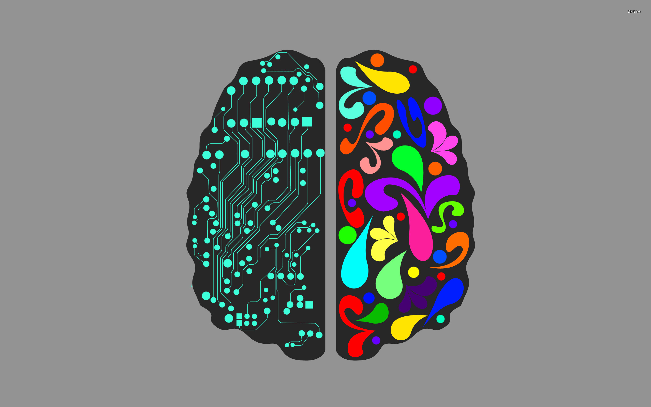 820-logical-and-creative-brain-hemispheres-2560x1600-vector-wallpaper