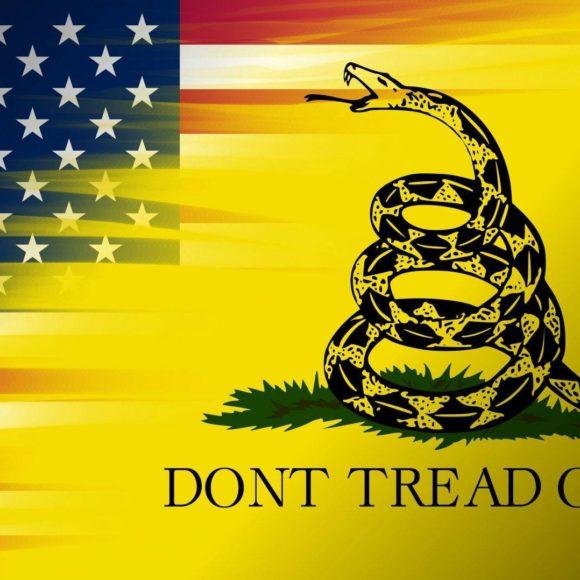 Stato e potere secondo il pensiero Libertarian